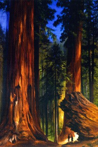 gilbert-munger-xx-giant-sequoias-xx-private-collection.jpg